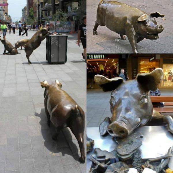 Trước đó, hình ảnh tượng lợn moi thùng rác sống động như này cũng từng khiến nhiều người phải thốt lên quá đáng yêu.