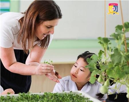 Học sinh Royal School được trang bị kỹ năng tự học và các kiến thức khoa học, năng lực tư duy để phát triển tối ưu