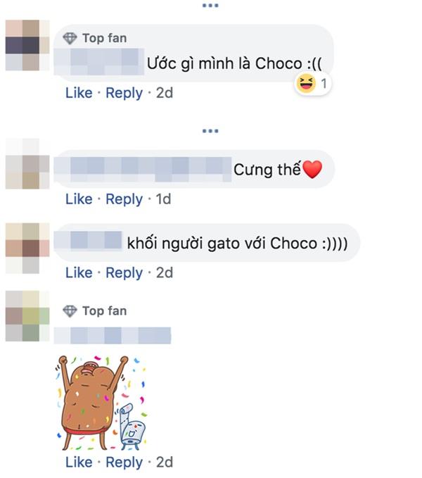 Thậm chí có người còn ước được là Choco.