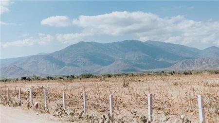 Nhiều mảnh đất khô cằn vì nắng nóng.