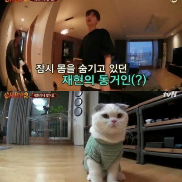 Sau khi kết hôn, Goo Hye Sun - Ahn Jae Hyun chuyển tới căn nhà tân hôn ở Yongin.