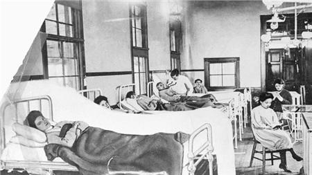 Dịch sốt thương hàn New York có nguồn gốc từ Mary Mallon - hay còn gọi là 'Mary thương hàn'