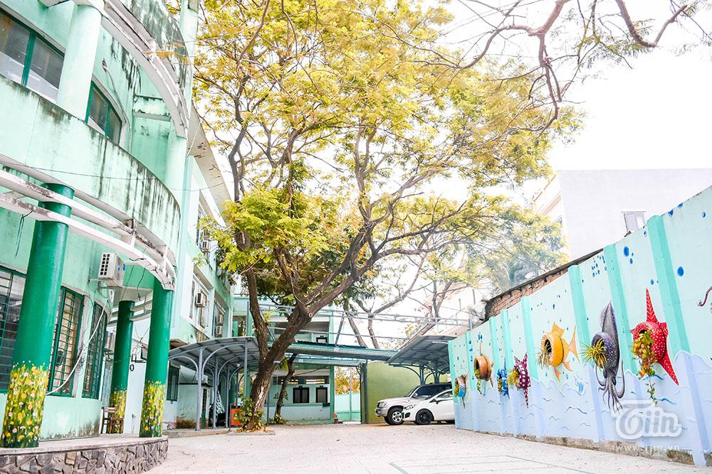 Những cơn mưa dông kèm lốc xoáy vào mùa hè dễ khiến nhiều cây cổ thụ đổ ngã, cành cây to lớn gây nguy cơ gây tai nạn với giáo viên và học sinh. Mới đây, tại một trường THCS ở TP. Hồ Chí Minh, cây phượng trong sân trường bật gốc đã đè trúng 13 em, đau lòng hơn khi vụ tai nạn khiến 1 em học sinh tử vong.