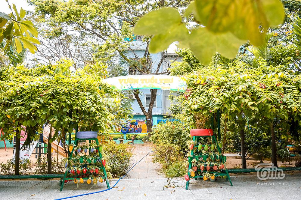 Chùm ảnh: Cây xanh trong trường học và nỗi ám ảnh gãy, đổ vào mùa mưa 13