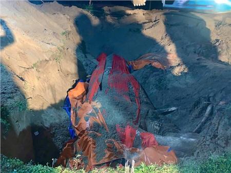 Toàn thân cá được trải lớp thảm đỏ để việc chôn cất được chu đáo và theo phong tục linh thiêng.