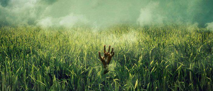 Những bộ phim chuyển thể từ tiểu thuyết của Stephen King được xác nhận sẽ ra mắt sau IT Chapter 2 (Phần 1) 4