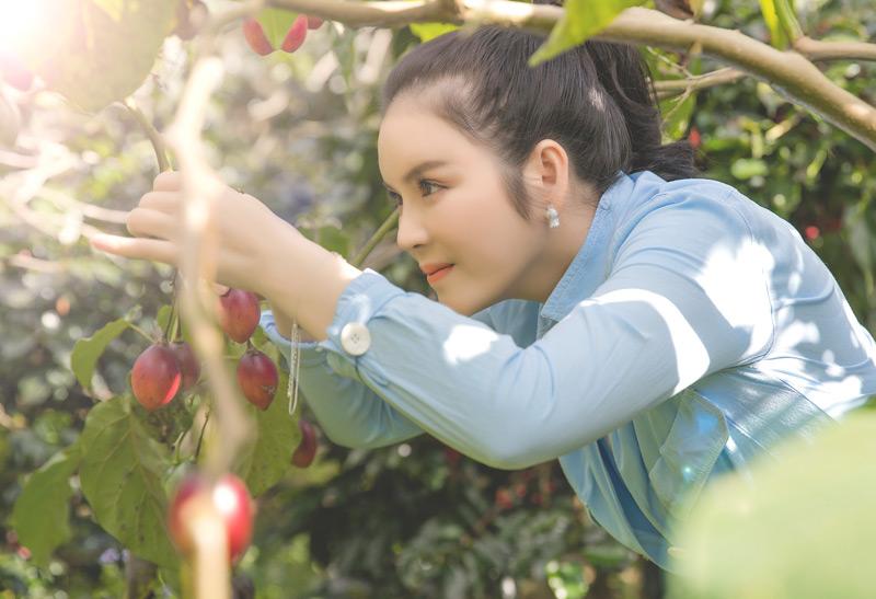 Mới đây, Lý Nhã Kỳ chia sẻ loạt ảnhtự tay thu hoạch vườn cà chua và xà lách trên nông trại ở Đà Lạt.