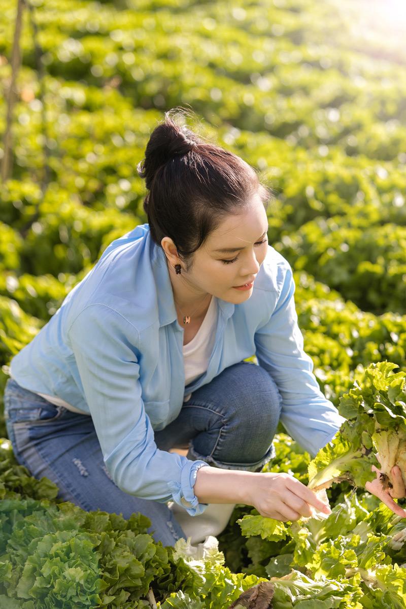 Dù bận rộn với nhiều công việc tại TP.HCM và di chuyển công tác nước ngoài nhưng Lý Nhã Kỳ vẫn dành rất nhiều thời gian lên Đà Lạt để cùng nhân viên trồng khu vườn hoa cổ tích cho Orion Resort của cô.